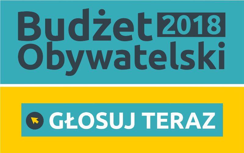 Ilustracja do informacji: Ankieta - Budżet Obywatelski 2018