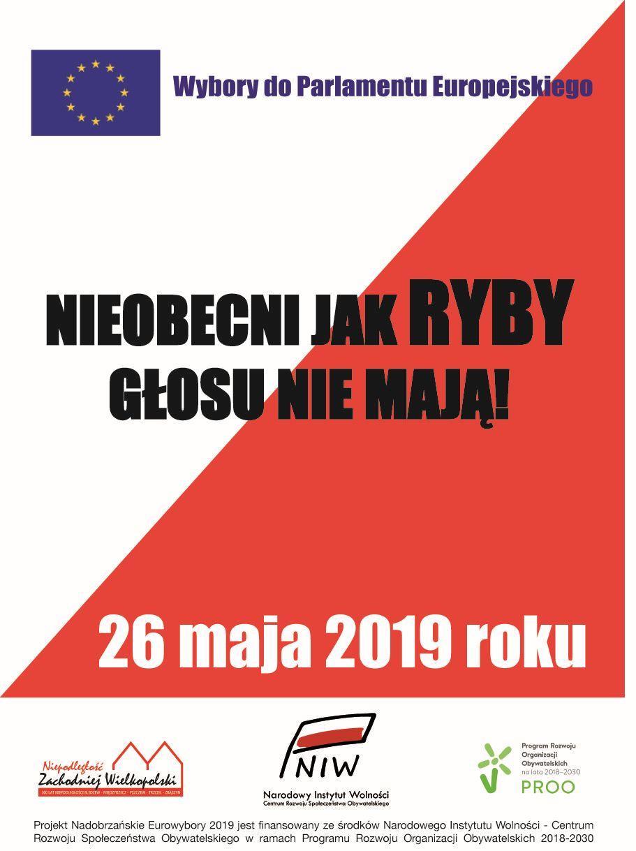 Wybory Europejskie